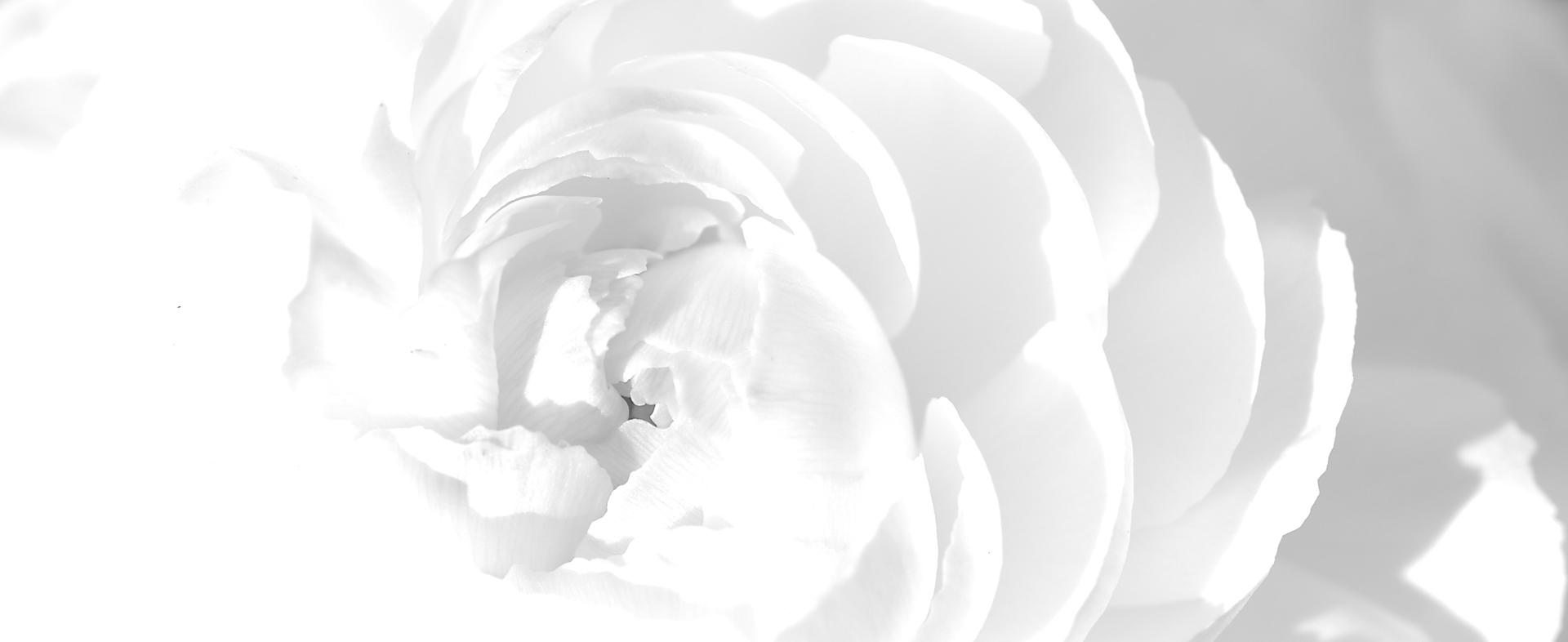 Значение белого цвета в психологии