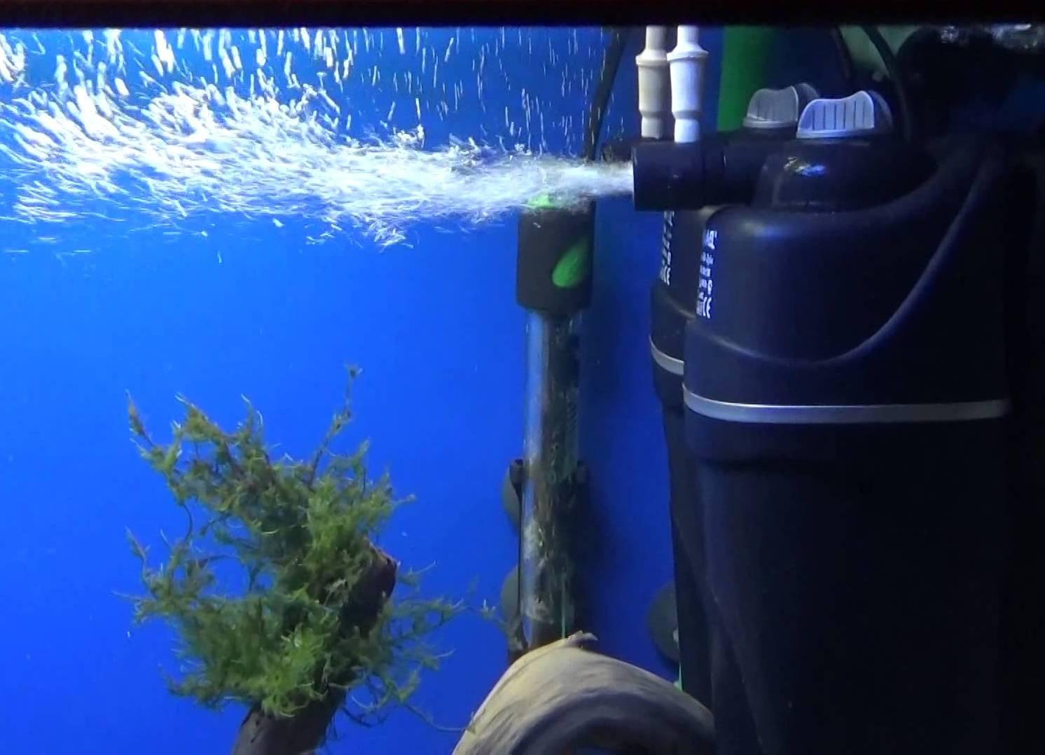 Какой выбрать фильтр для маленького аквариума: обзор и рекомендации