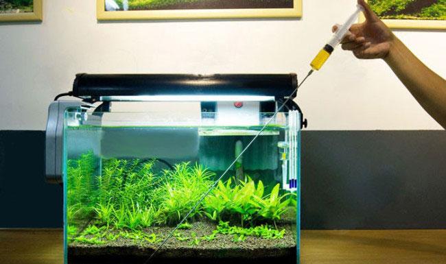 Как и из чего можно изготовить удобрения для аквариумных растений своими руками?