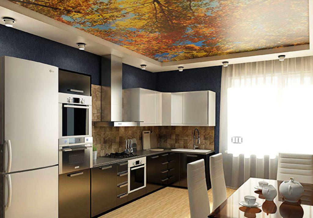 сможете картинки потолки в кухне нельзя