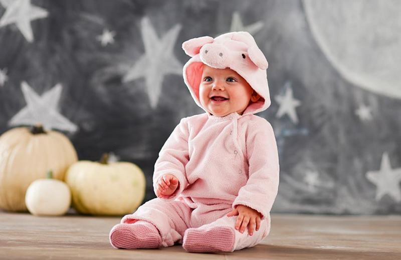 Люди родившиеся в год свиньи характеристика