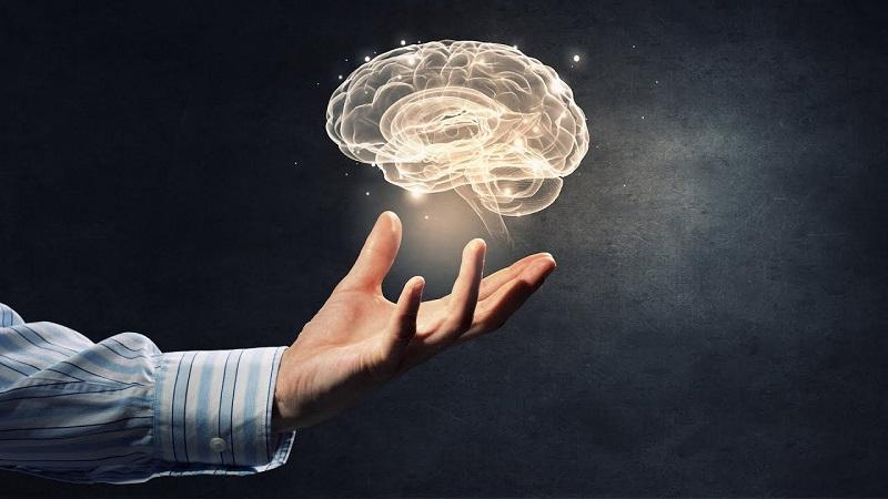 Как повысить концентрацию внимания? Упражнения для развития внимательности у взрослого человека и детей