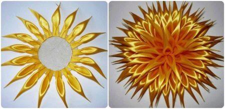 Сбор цветка астры