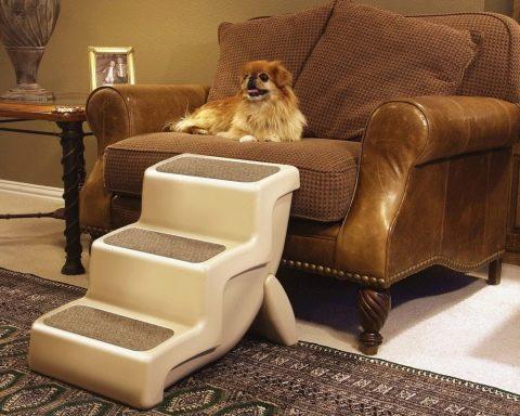 Лестницы для собак: ступеньки для собак мелких и крупных пород ...