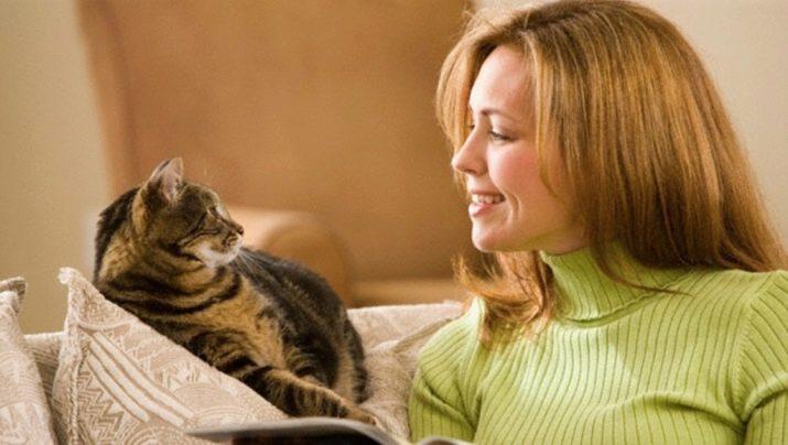 Как кошки понимают человеческую речь